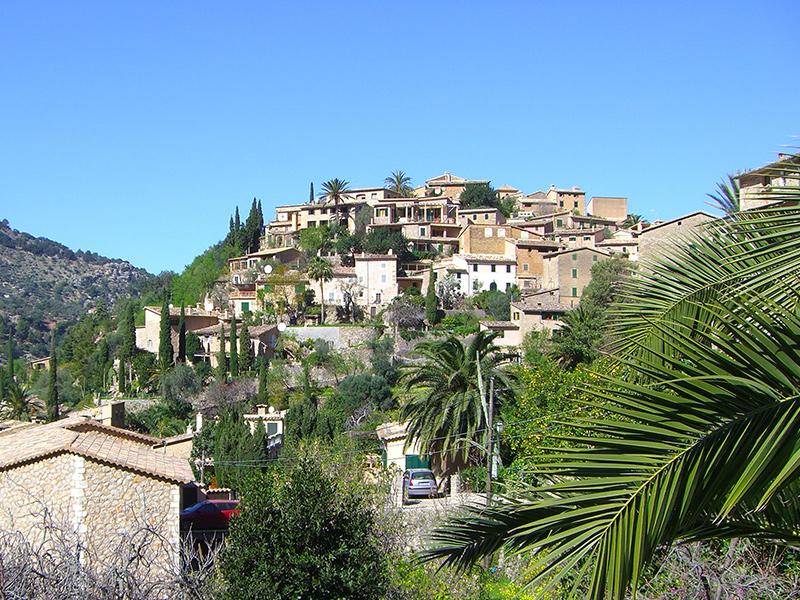 Mandelblüte auf Mallorca - zwischen Valldemossa und Deia