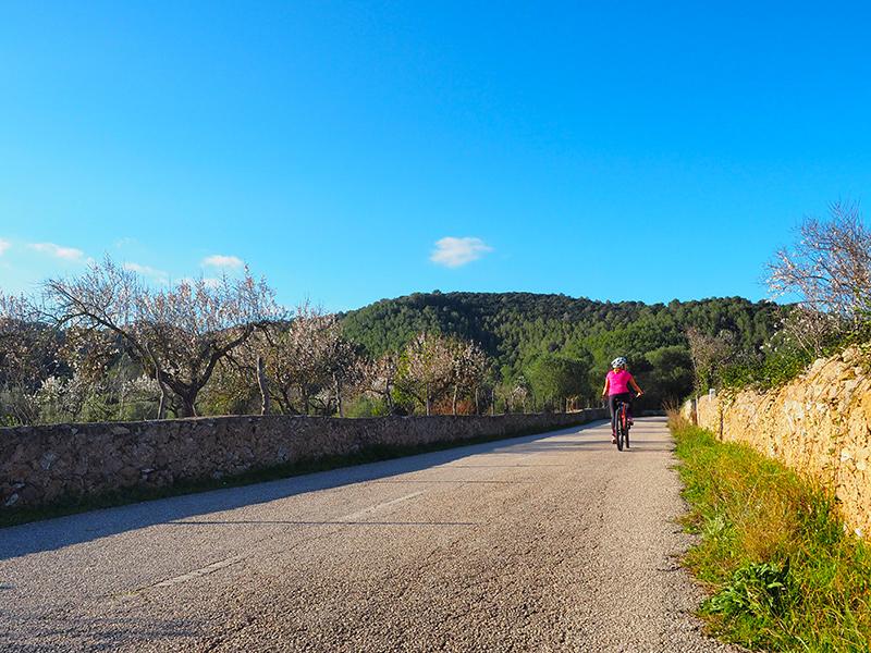 Mallorca Radtour von Arta zur Ermita de Betlem