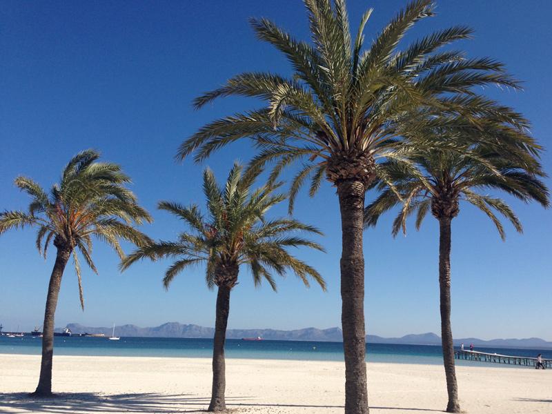 Mallorca-Strand-Alcudia