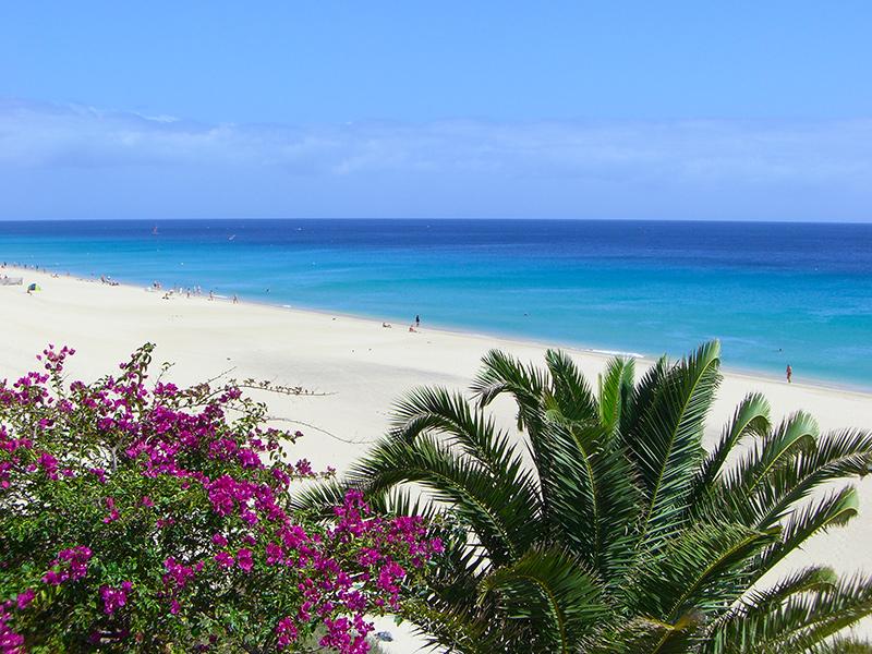 Fuerteventura Pauschal