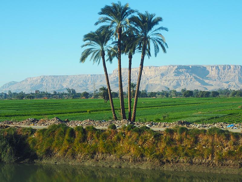 Ägypten - Niltal