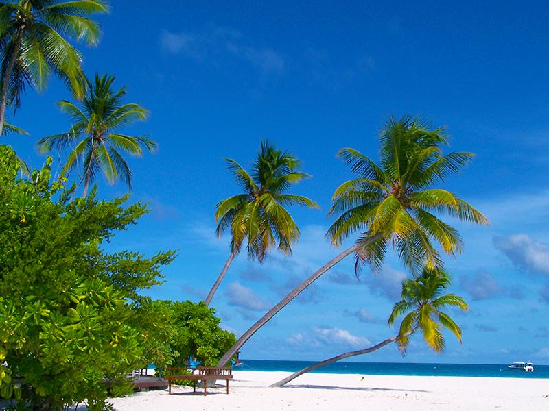 Malediven - Strand
